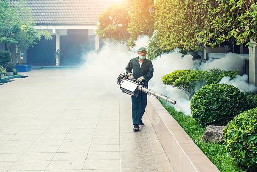 Mosquito Pest Control Singapore